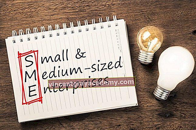 Kaj so mala in srednje velika podjetja (MSP)?