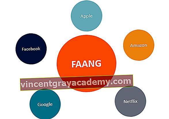 Ce sunt stocurile FAANG?