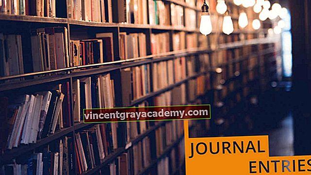 Hva er journaloppføringer i regnskap?