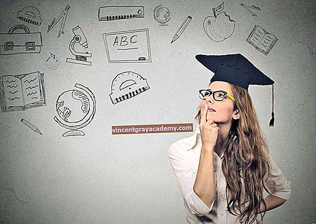 Čo robiť po ukončení štúdia?