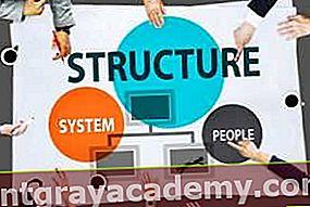 Kaj je struktura podjetja?