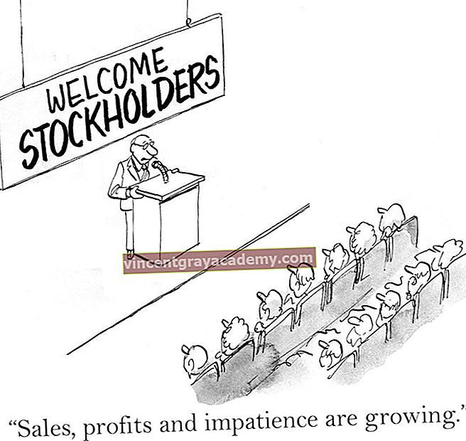 Hva er Founders Stock?