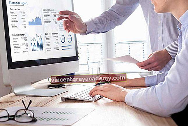 Ce sunt ratele financiare?