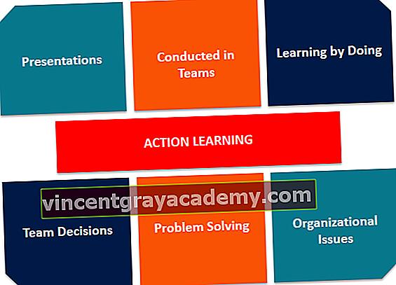 Hva er Action Learning?