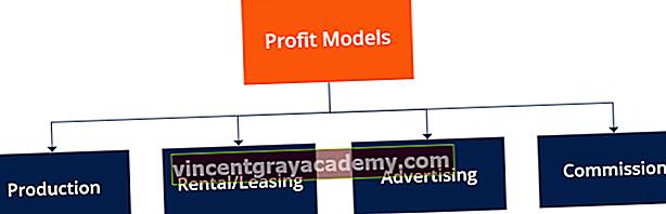 Ce este un model de profit?