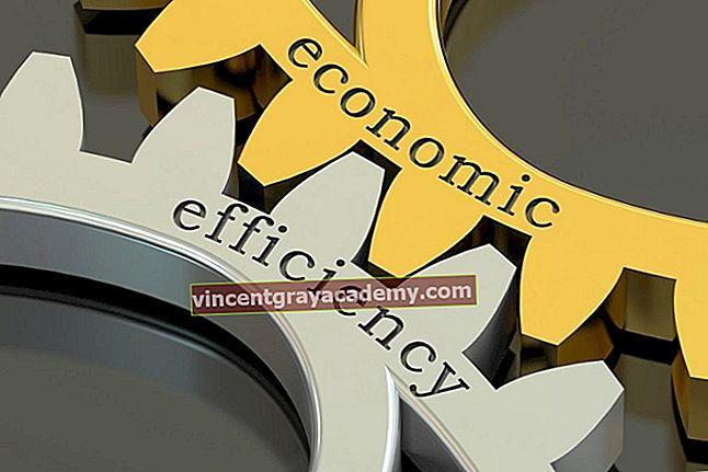 Hva er økonomisk effektivitet?