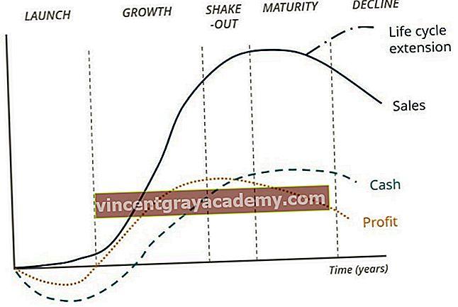 Hva er virksomhetens livssyklus?