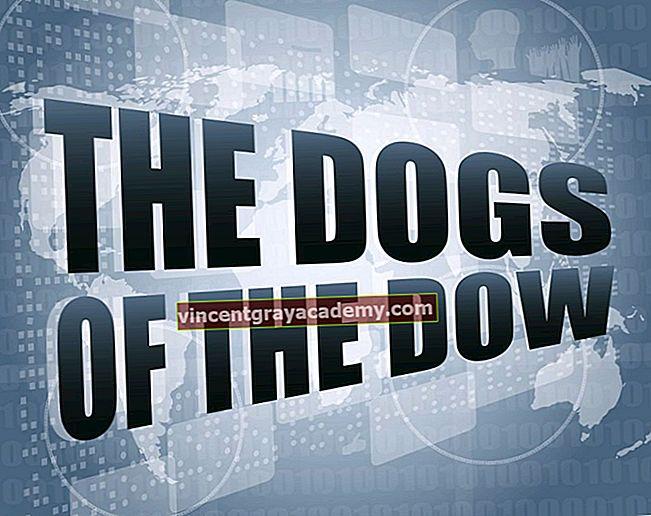 Ce sunt câinii din Dow?