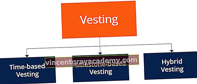 Hva er Vesting?