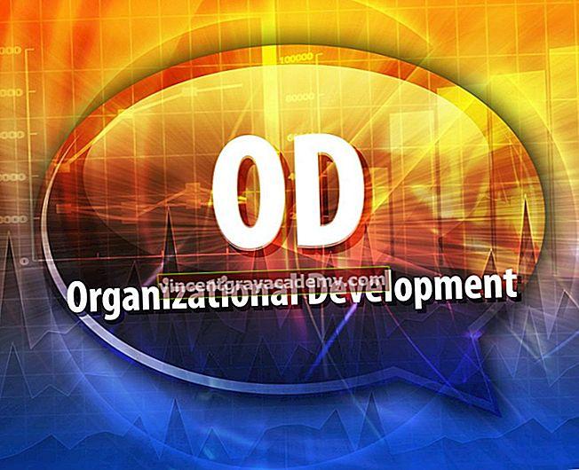 Kaj je organizacijski razvoj?