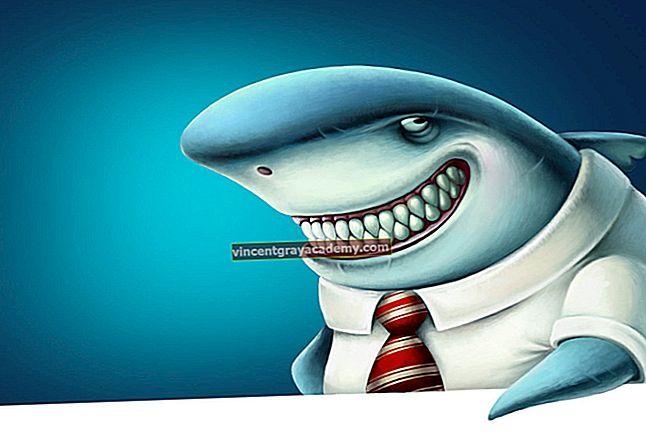 상어 구충제는 무엇입니까?