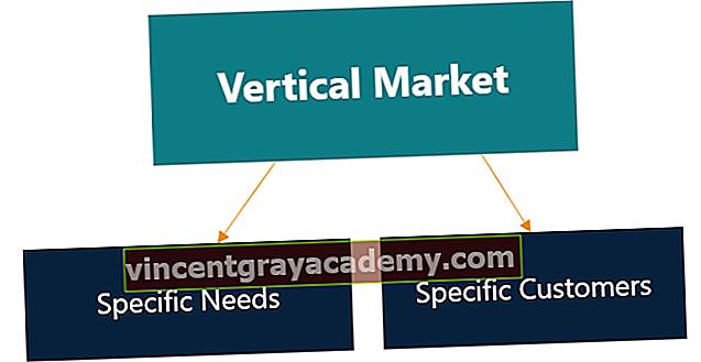 Ce este o piață verticală?