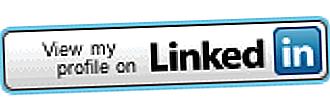 Kaj je povzetek LinkedIn?