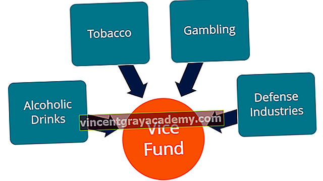 Τι είναι το Vice Fund;