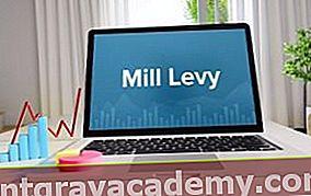 Kaj je Mill Levy / Stopnja?