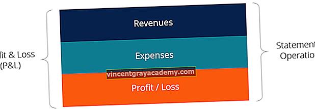 Ce este Declarația de profit și pierdere (P&L)?