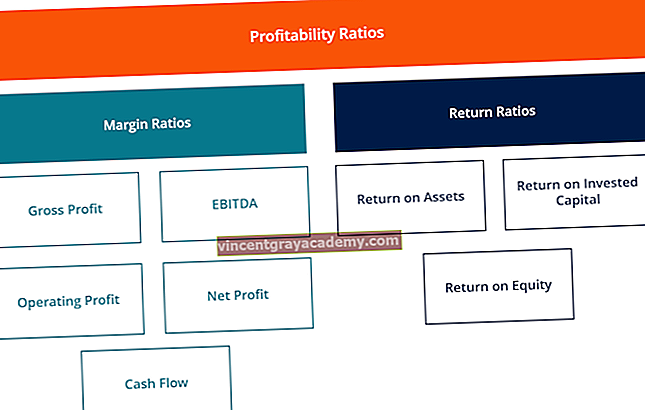 Ce sunt ratele de rentabilitate?