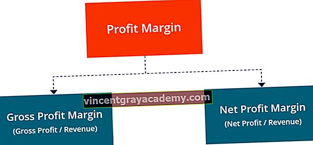 Ce este o marjă de profit?