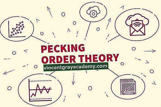 Ce este teoria ordinii ciocănitoare?