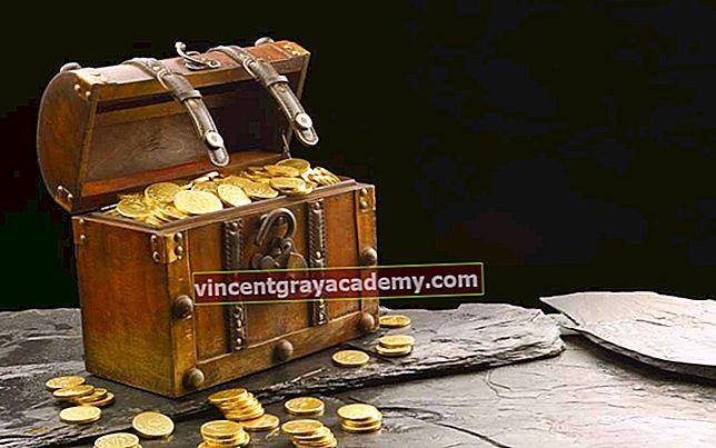 Hva er Treasury Stock?