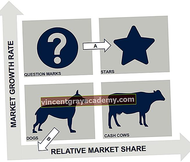 Ce este matricea Boston Consulting Group (BCG)?